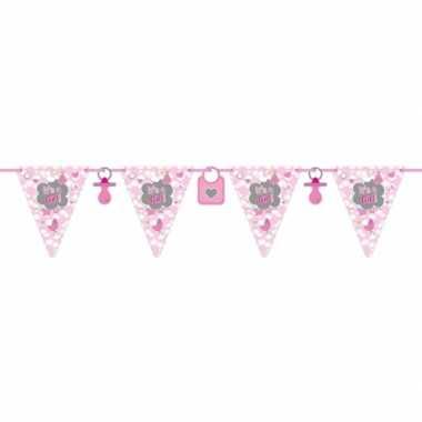 2x stuks vlaggenlijnen geboorte meisje 6 meter