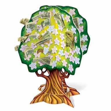 Geboorte/babyshower geldboompje 38 cm