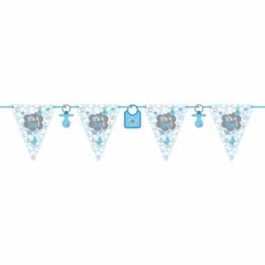 Vlaggenlijn geboorte jongen 6 meter
